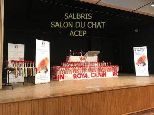 exposition-salbris-2016